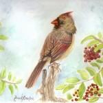 painting-cardinal