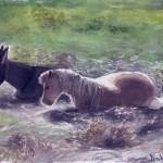 painting-pony